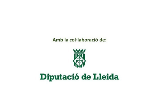 La Diputació de Lleida va atorgar un ajut de 6.023,33 €